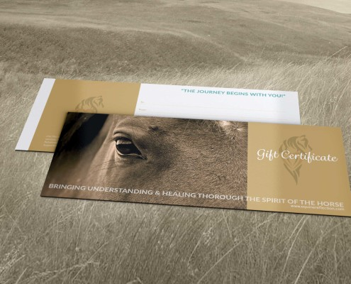 Equine Reflection, Gift Certificate