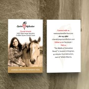 Equine Reflection - Business Card